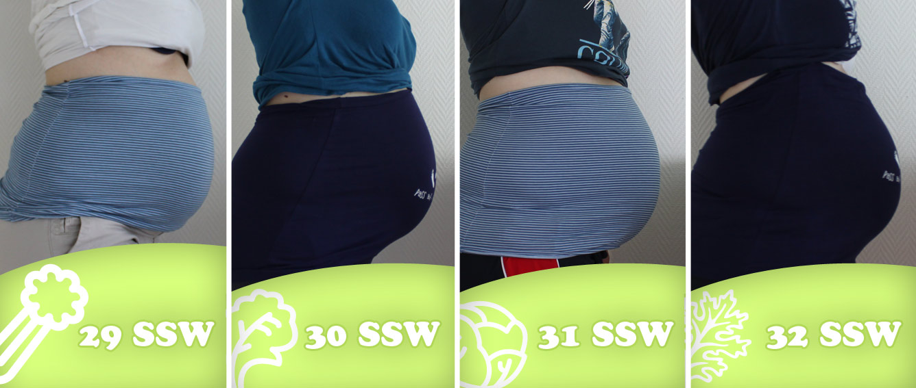 Bauchbilder 29-32 SSW